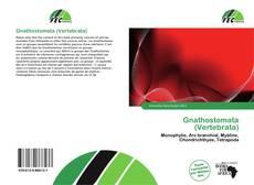 Buchcover von Gnathostomata (Vertebrata)