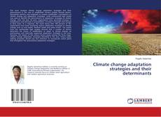 Bookcover of Climate change adaptation strategies and their determinants