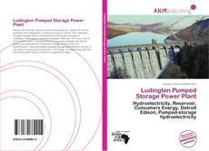 Ludington Pumped Storage Power Plant kitap kapağı
