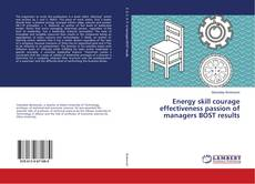 Energy skill courage effectiveness passion of managers BOST results kitap kapağı