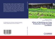 Bookcover of Effect of Mulching on Crop Production Under Rainfed Condition