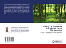 Bookcover of Scaling Up Efforts for Sustainable Forest Management
