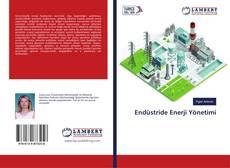 Bookcover of Endüstride Enerji Yönetimi