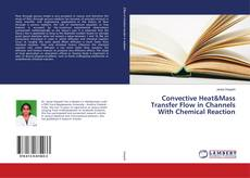 Capa do livro de Convective Heat&Mass Transfer Flow in Channels With Chemical Reaction