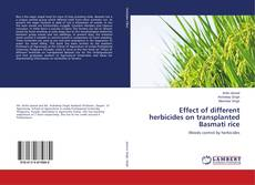 Copertina di Effect of different herbicides on transplanted Basmati rice