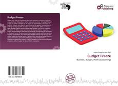 Bookcover of Budget Freeze
