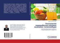 Bookcover of Технология переработки соковых выжимок топинамбура