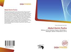 Bookcover of Abdul Kerim Pasha