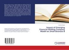 Impact of Emerging Financial Holding Company Model on Small Business B kitap kapağı