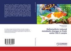 Deltamethrin induced metabolic changes in fresh water fish C.carpio的封面