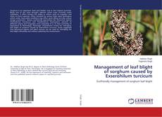 Couverture de Management of leaf blight of sorghum caused by Exserohilum turcicum