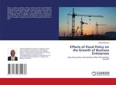 Effects of Fiscal Policy on the Growth of Business Enterprises kitap kapağı
