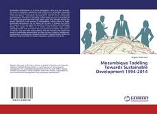 Обложка Mozambique Toddling Towards Sustainable Development 1994-2014