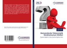 Bookcover of Hemşirelerde Tükenmişlik Sendromunun Etkileri