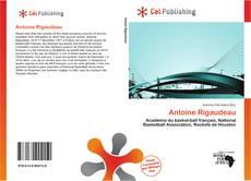 Buchcover von Antoine Rigaudeau