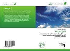Buchcover von Angel Ortiz