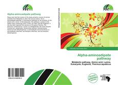 Alpha-aminoadipate pathway kitap kapağı