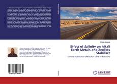 Portada del libro de Effect of Salinity on Alkali Earth Metals and Zeolites Stabiliser