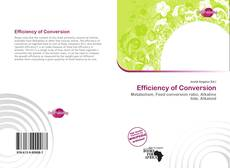 Couverture de Efficiency of Conversion