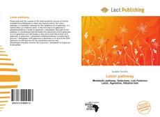 Leloir pathway的封面