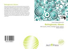 Bookcover of Bolingbrook, Illinois
