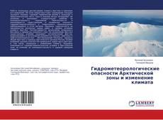 Borítókép a  Гидрометеорологические опасности Арктической зоны и изменение климата - hoz