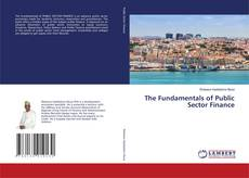 Bookcover of The Fundamentals of Public Sector Finance