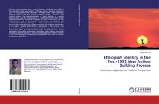 Ethiopian Identity in the Post-1991 New Nation Building Process kitap kapağı