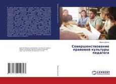 Bookcover of Совершенствование правовой культуры педагога