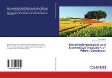 Обложка Morphophysiological and Biochemical Evaluation of Wheat Genotypes