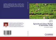 Copertina di Agricultural Labour Market in Karnataka, India