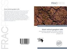 Bookcover of Giant retinal ganglion cells