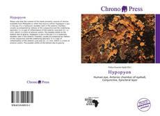 Hypopyon kitap kapağı