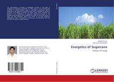 Capa do livro de Energetics of Sugarcane