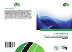 Carlo Bordini kitap kapağı