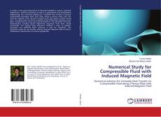 Bookcover of Numerical Study for Compressible Fluid with Induced Magnetic Field