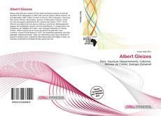 Albert Gleizes kitap kapağı