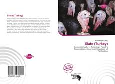 Bookcover of Slate (Turkey)