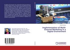 Bookcover of Implementation of Multi-Channel Marketing in a Digital Environment