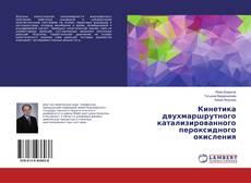 Bookcover of Кинетика двухмаршрутного катализированного пероксидного окисления