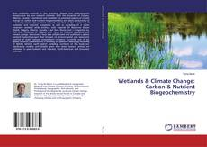 Wetlands & Climate Change: Carbon & Nutrient Biogeochemistry kitap kapağı