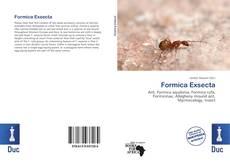 Borítókép a  Formica Exsecta - hoz