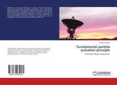 Bookcover of Fundamental particle pulsation principle