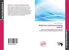 Buchcover von Anterior communicating artery