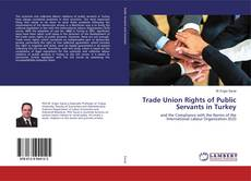 Bookcover of Trade Union Rights of Public Servants in Turkey