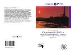 Bookcover of Capesterre-Belle-Eau