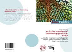 Buchcover von Articular branches of descending genicular artery