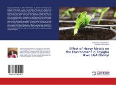 Effect of Heavy Metals on the Environment in Enyigba Ikwo LGA Ebonyi的封面