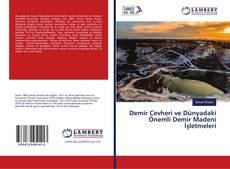 Bookcover of Demir Cevheri ve Dünyadaki Önemli Demir Madeni İşletmeleri