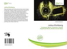 Julius Eichberg kitap kapağı